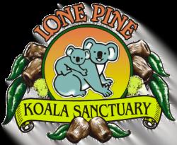 lone pine koala sanctuary logo